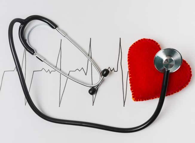 cardiología-veterinaria-en-Barcelona-Clot
