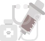especialidades para cuidados de animales en veterinaria Barcelona