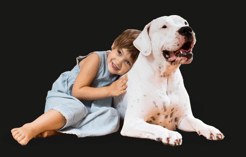 cuidados veterinarios en Barcelona